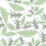 Naadloos patroon met groene bladeren Stock Afbeelding