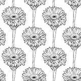 Naadloos patroon met hand die zwart-witte bloemen trekken Stock Foto