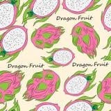 Naadloos patroon met helder pithay fruit stock afbeeldingen