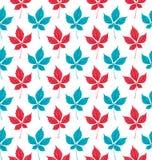 Naadloos patroon met het gebladerte van de herfstparthenocissus Creatieve vectorillustratie Stock Fotografie