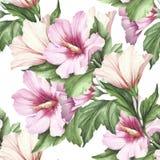 Naadloos patroon met hibiscus De hand trekt waterverfillustratie Stock Afbeelding