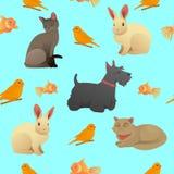 Naadloos Patroon met Huishuisdieren - Katten, Hond en Konijn vector illustratie