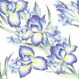 Naadloos patroon met iris en hydrangea hortensia De illustratie van de waterverf Stock Foto