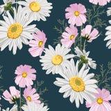 Naadloos patroon met kamilles en wilde roze de herfstbloemen met bladeren vector illustratie