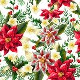 Naadloos Patroon met Kerstmisbloemen Vector, vector illustratie