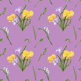 Naadloos patroon met kleurrijke fresia's en grassen De druktextuur van het stoffenbehang op stoffige roze achtergrond royalty-vrije illustratie