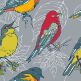 Naadloos patroon met kleurrijke hand getrokken vogels en bladeren royalty-vrije illustratie