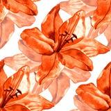 Naadloos patroon met kleurrijke leliesbloem op witte achtergrond reeks van het bloeien bloemen voor huwelijksuitnodigingen Stock Afbeelding