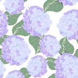 Naadloos patroon met kleurrijke violette hydrangebloem op witte achtergrond stock illustratie