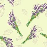 Naadloos patroon met lavendel Stock Foto