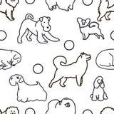 Naadloos patroon met leuke honden Stock Afbeeldingen