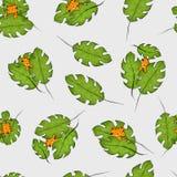 Naadloos Patroon met Leuke Katten in Tiger Colors Hiden achter de Bladeren Ontworpen voor Behang, Verpakkend Document, Doek enz. Royalty-vrije Stock Foto's