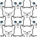 Naadloos patroon met leuke witte katten Stock Afbeelding