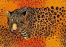 Naadloos patroon met luipaarden vector illustratie