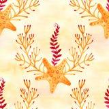 Naadloos patroon met marien installaties, bladeren en zeewier Hand getrokken mariene flora in waterverfstijl vector illustratie