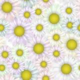 Naadloos patroon met mooi madeliefje Bloeiende bloem Doekpastelkleuren stock illustratie