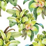 Naadloos patroon met Mooie bloemen, Waterverf het schilderen Stock Afbeelding