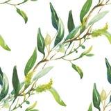 Naadloos patroon met Mooie bloemen, Waterverf het schilderen Stock Fotografie