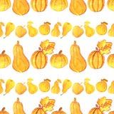 Naadloos patroon met mooie gouden pompoenen, peren en appelen op witte achtergrond Het Schilderen van de waterverf Het concept va Stock Afbeelding