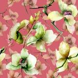 Naadloos patroon met Mooie orchidee royalty-vrije stock afbeelding
