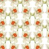 Naadloos patroon met narcissen Royalty-vrije Stock Afbeeldingen