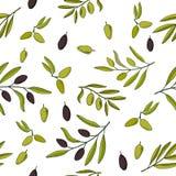 Naadloos patroon met olijftakken Stock Fotografie