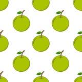 Naadloos patroon met oranje fruit Royalty-vrije Stock Fotografie