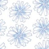 Naadloos patroon met overladen witlofbloem in blauw op de witte achtergrond met vlekken Bloemenachtergrond in contourstijl Royalty-vrije Stock Afbeeldingen