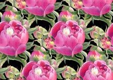 Naadloos patroon met pioenen Stock Foto's
