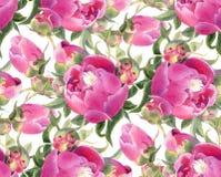 Naadloos patroon met pioenen Royalty-vrije Stock Afbeeldingen