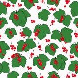 Naadloos patroon met rode aalbessen Royalty-vrije Stock Fotografie