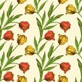 Naadloos patroon met rode en gele tulpenbloemen Royalty-vrije Stock Afbeeldingen