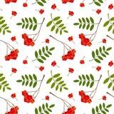 Naadloos patroon met rode en oranje Lijsterbessenbessen en bladeren Vector illustratie Stock Foto's
