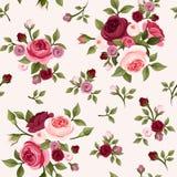 Naadloos patroon met rode en roze rozen Vector illustratie Stock Afbeeldingen