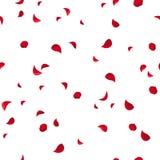 Naadloos patroon met rode roze bloemblaadjes Vector illustratie Stock Fotografie