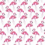 Naadloos patroon met roze flamingo op een witte achtergrond De illustratie van de waterverf stock illustratie