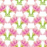 Naadloos patroon met roze lelie Stock Foto's