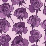 Naadloos patroon met rozen Lilac kleur Stock Fotografie