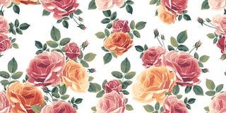 Naadloos patroon met rozen Uitstekende bloemenachtergrond Stock Foto's