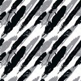 Naadloos patroon met silhouetten van pluimen Stock Afbeeldingen