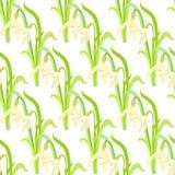 Naadloos patroon met sneeuwklokjes Vector illustratie Stock Foto's