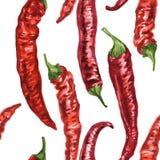 Naadloos patroon met Spaanse peperpeper Stock Afbeeldingen