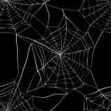 Naadloos patroon met spinneweb Stock Afbeelding