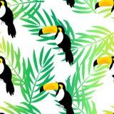 Naadloos patroon met toekan en palmtakken op witte achtergrond Vector de zomerachtergrond royalty-vrije illustratie