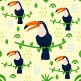Naadloos patroon met toekan - vectorillustratie, eps stock illustratie