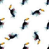 Naadloos patroon met toekannen Kan voor textiel, stof worden gebruikt document het verpakken Stock Foto's