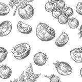 Naadloos patroon met Tomaat, half en plak Zwart-witte kleur Uitstekende vectorhand getrokken graverende illustratie stock illustratie