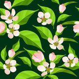 Naadloos patroon met tot bloei komende takken Royalty-vrije Stock Afbeeldingen
