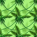 Naadloos patroon met tropische bladeren en lianas vector illustratie
