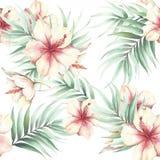 Naadloos patroon met tropische bloemen en bladeren De illustratie van de waterverf Stock Foto